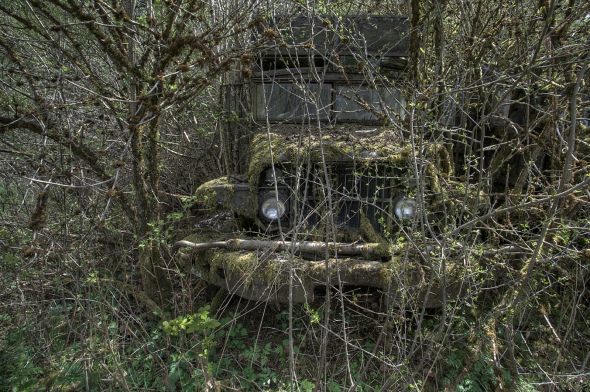'Hidden by nature'